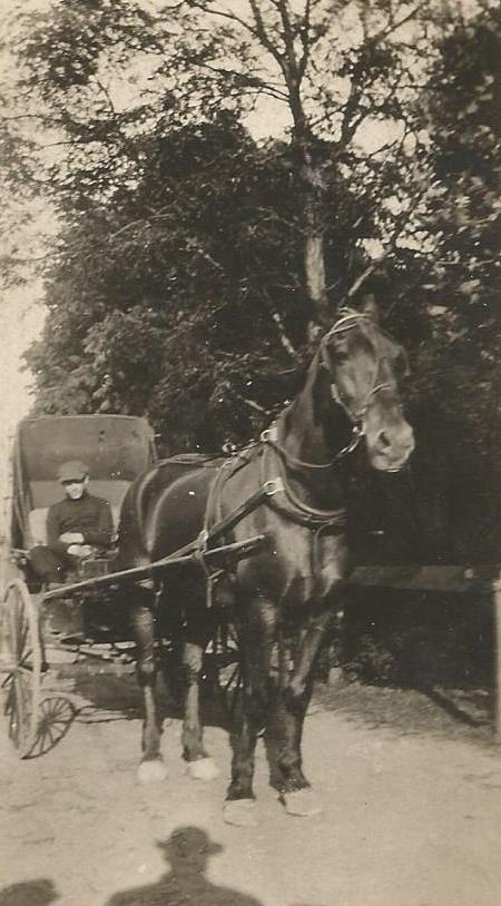 John Roetman 1913 horse carriage2