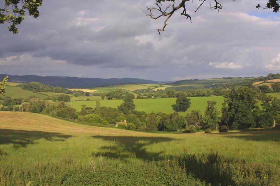 ViewAcross-Nettlecombe-Pari2