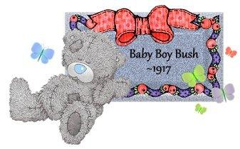 Baby Boy Bush 1917