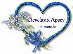 cleveland-apsey