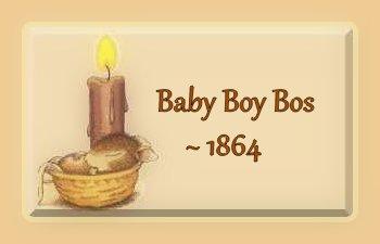 baby-boy-bos-1864