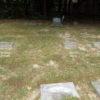 Corman Katz stones