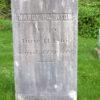 Nancy Parasol stone 1