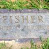 Fisher stone 7.12.2018-6